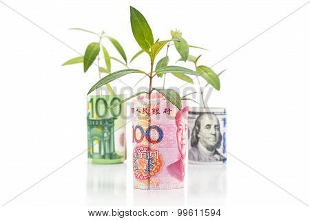 Concept Of Green Plant Grow On Currency With Renminbi In Foreground