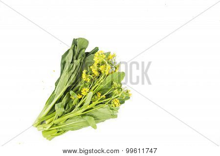 Bunch Of Floral Choy Sum Green Vegetable Popular Among The Chinese.