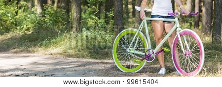 Trip On A Bike