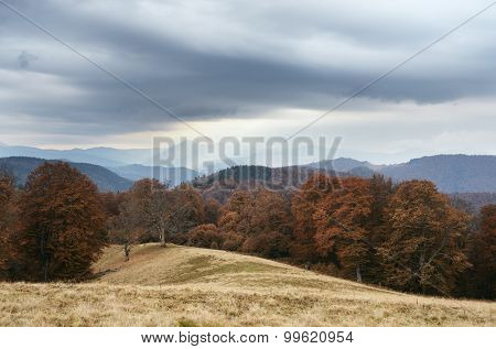 Cloudy day in the mountains. Autumn Landscape with beech forest. Carpathians, Ukraine, Europe