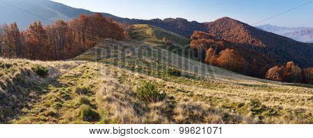 Morning landscape in the autumn. The mountain panorama with the road in the dry grass. Carpathians, Ukraine, Europe