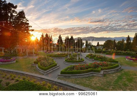 Ubc Rose Garden At Sunset