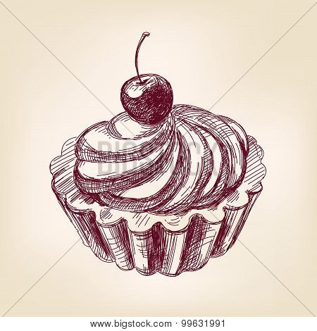 Cherry cupcake hand drawn vector llustration realistic