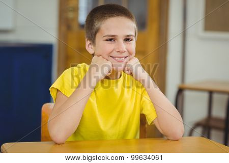 Portrait of smiling pupil sitting at his desk in a classroom in school