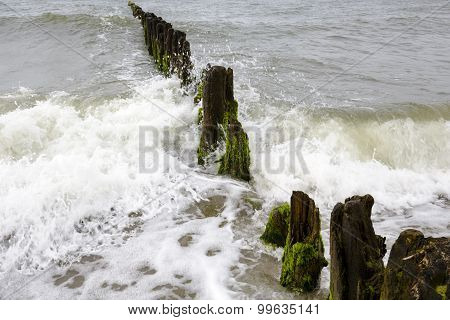 Very Old And Rotten Wooden Breakwaters