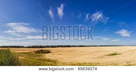 Sky With Cirrus Clouds Over The Field After Harvest