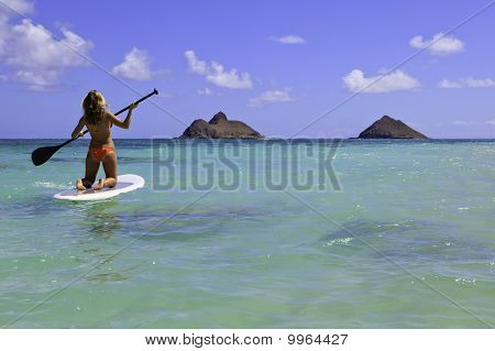 girl in bikini on a paddle board