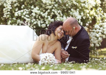 Bride And Groom Laying On Marguerite Field
