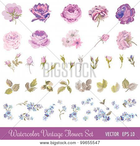 Vintage Flower Set - Watercolor Style - in vector