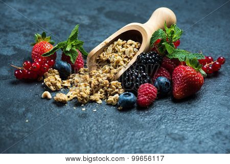 Muesli Granola Nad Fresh Ripe Berries