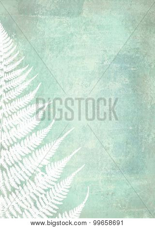 Illustration Of Fern Leaves On Shabby Background. Foliage Design