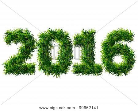 New Year 2016 Of Christmas Tree Branches Isolated On White Background