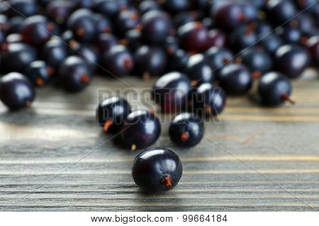 Heap of wild black currant on wooden table close up