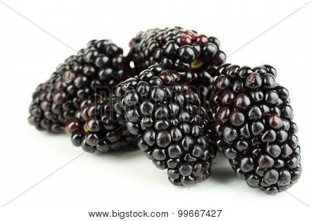 Ripe blackberry isolated on white