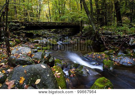 Stream In Fall At Smoky Mountain National Park