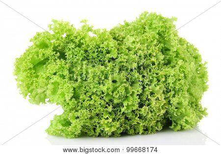 Bunch of green lettuce isolated on white