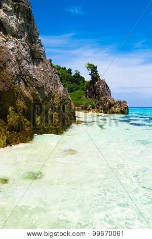 Sunny Shore Heavenly Cove