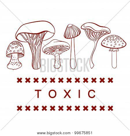 Poisonous toxic mushrooms vector table on white background