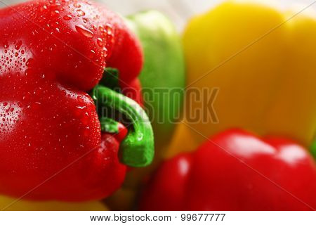 Group of wet colorful peppers, closeup