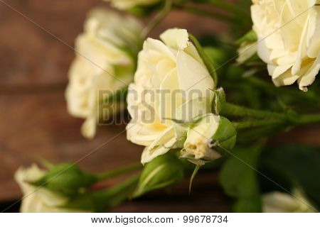 Beautiful small roses on wooden table close up