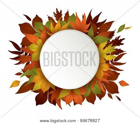 greeting card on maple leaves