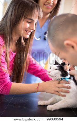 Lovely  girl calm down her sick cat in veterinary clinic