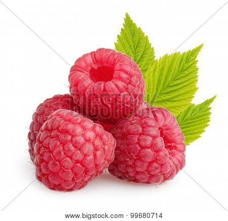 Raspberries With Leaves Isolated