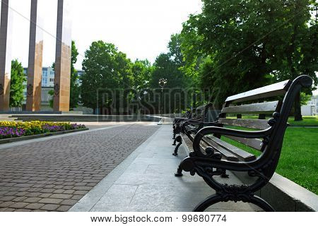 Bench in summer park outdoors
