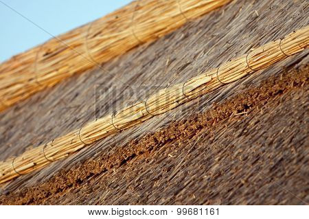 Thatched House Top