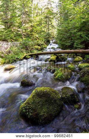 Natural Spring Water