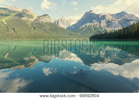 Serenity Emerald Lake in the Yoho National Park, Canada