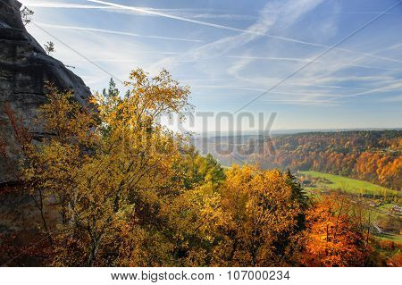 Vibrant Colorful Autumn Landscape In Daylight