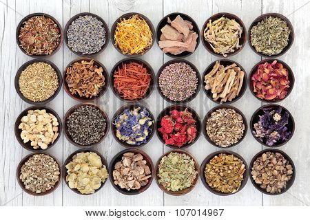 Large flower and herb selection used in herbal medicine over distressed white wooden  background.