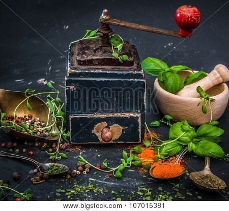 mortar with herbs and spices on a dark background
