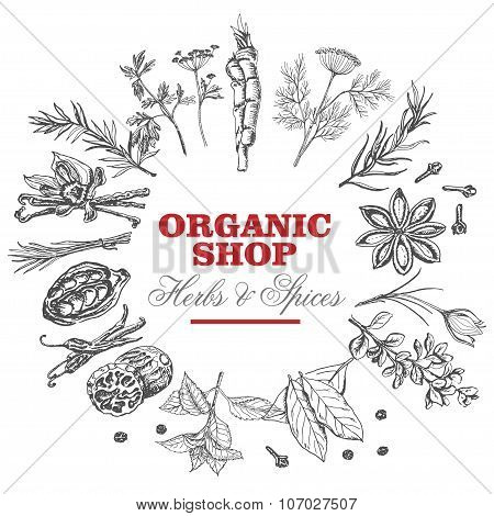 Vector background with isolated spices in a circle and an inscription in the middle