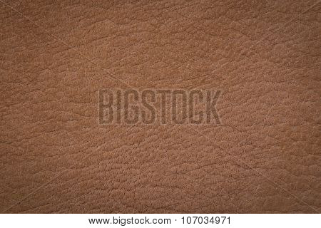 Beige Leather Surface