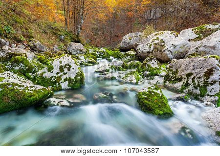 Mountain Stream In Autumn, Julian Alps, Italy