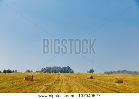 Haystacks on field