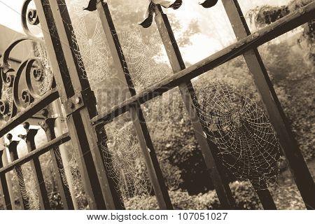 Cobweb Gate Sepia
