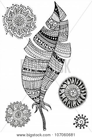 Pattern for coloring book. Feather and mandalas on a white background. Vintage, tribal, artistically