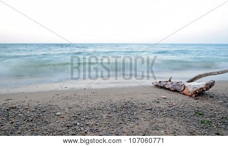 Dry Driftwood Out Of Water Washed By The Waves. Lake Baikal, Sukhaya Bay. Long Exposure