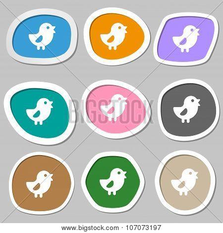 Chicken, Bird Icon Symbols. Multicolored Paper Stickers. Vector