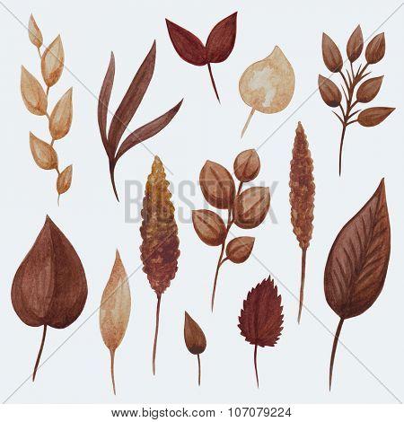 Watercolor golden brown autumn leaves set.