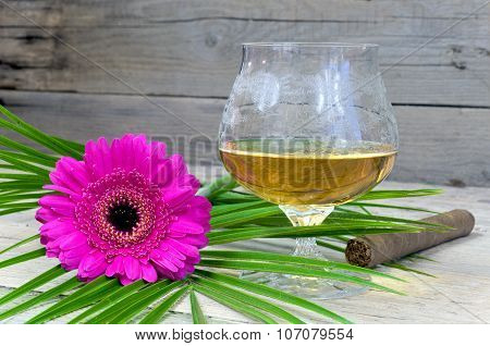 Glass Of Cognac With Pink Gerbera And Cigar