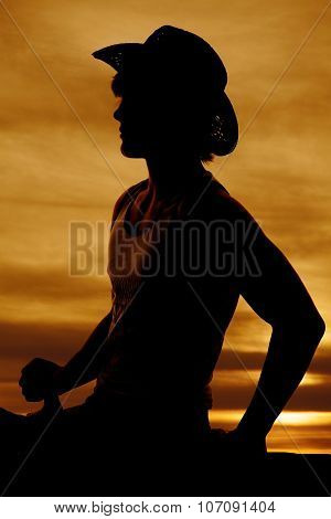 Silhouette Of A Cowboy On A Horse Hand On Saddle