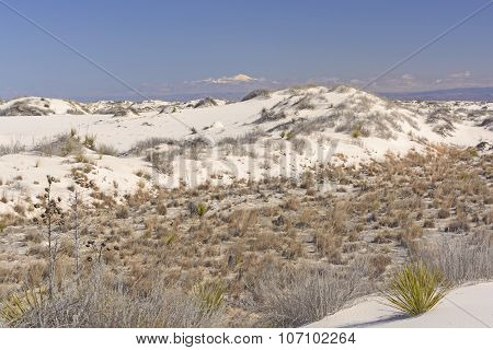 White Sands Beneath The Mountains