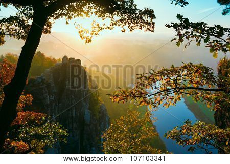View into deep misty valley in Saxon Switzerland. Sandstone peaks increased from foggy background, the fog is orange due to sunrise. Bastei Bridge. Soft Focus on tree