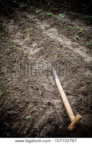 In the garden, in the garden is a tool designed to work in the country