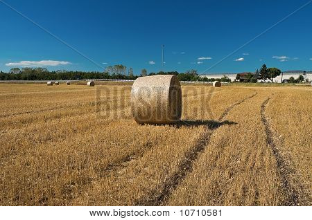 Rolling haystack in countryside.