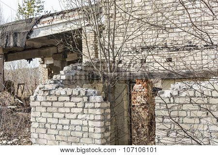 Fragment Of An Old Ruined Building Silicate Brick With Trees Growing On The Roof